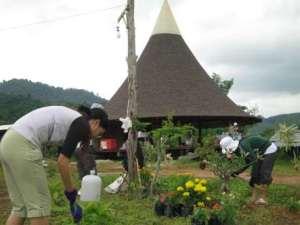 planting-flower