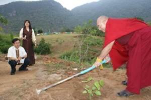 planting-bodhi
