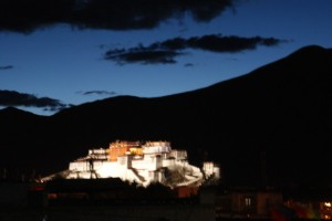Potala at night