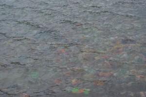 bumpa under water
